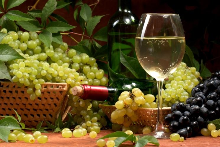 wine-and-grapes