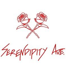 Blog Influencer of the Year serendipityave.co.nz